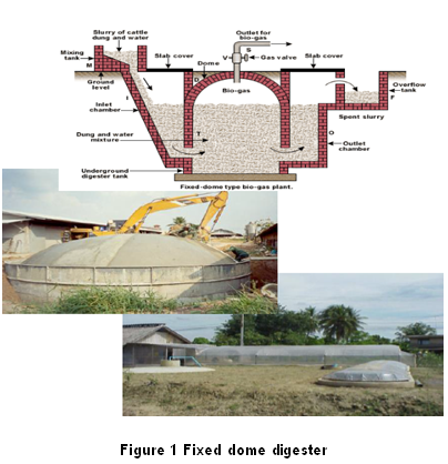 Biogas production from manure | Department of Alternative Energy